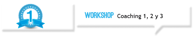 Workshop Coaching
